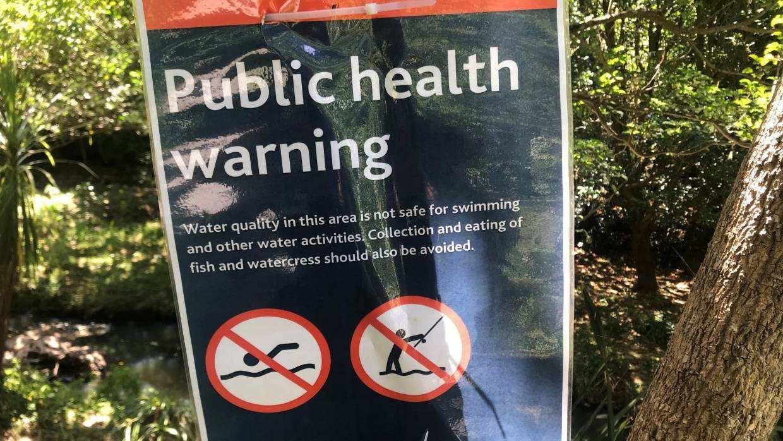 粪便污染超标!奥克兰最脏水域人气不减,现场竟如同澡堂!