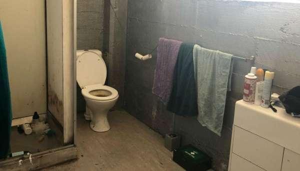 785纽币每周就住这样的房子?惠灵顿一奇葩房源遭网友群嘲