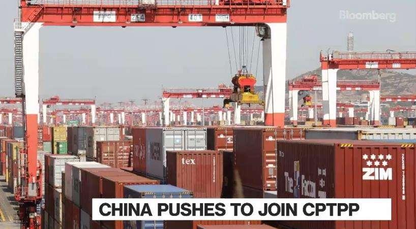 中国又有大动作!急需新西兰支持!一场前所未有的博弈开始了!