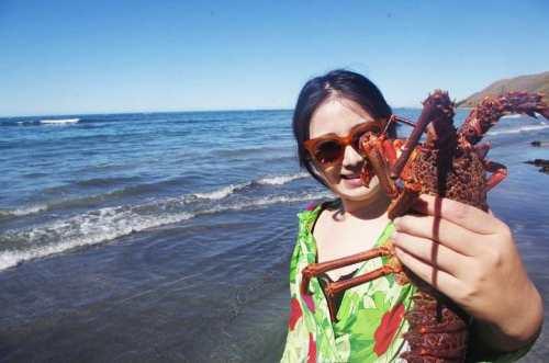 快被吃绝种了!奥克兰环保组织紧急呼吁:请立即停止捕捞这种海鲜!